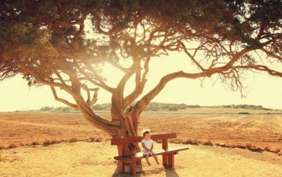 Як віднайти душевний спокій? Конкретні поради на Великий піст