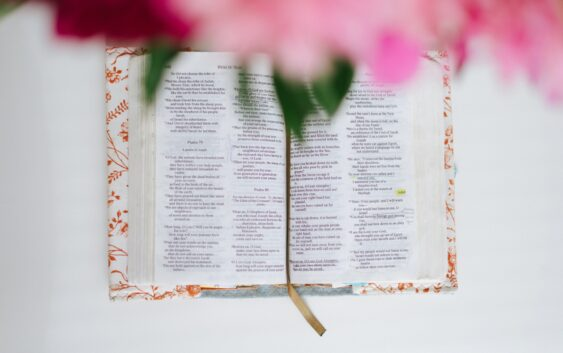 Три могутні істини із 23 псалма, які допоможуть у складні часи
